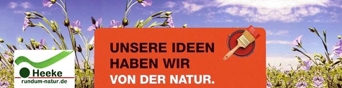 Rundum Natur ökologische Farben und Fussböden